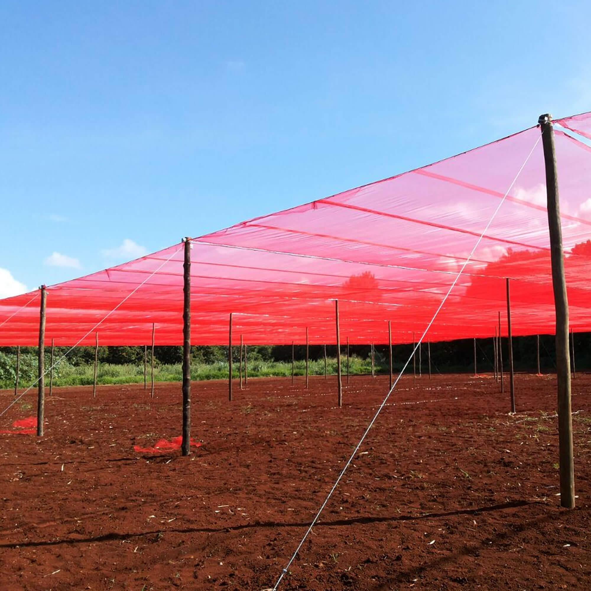 Tela de Sombreamento Vermelha 20% - 4,15 x 30 metros