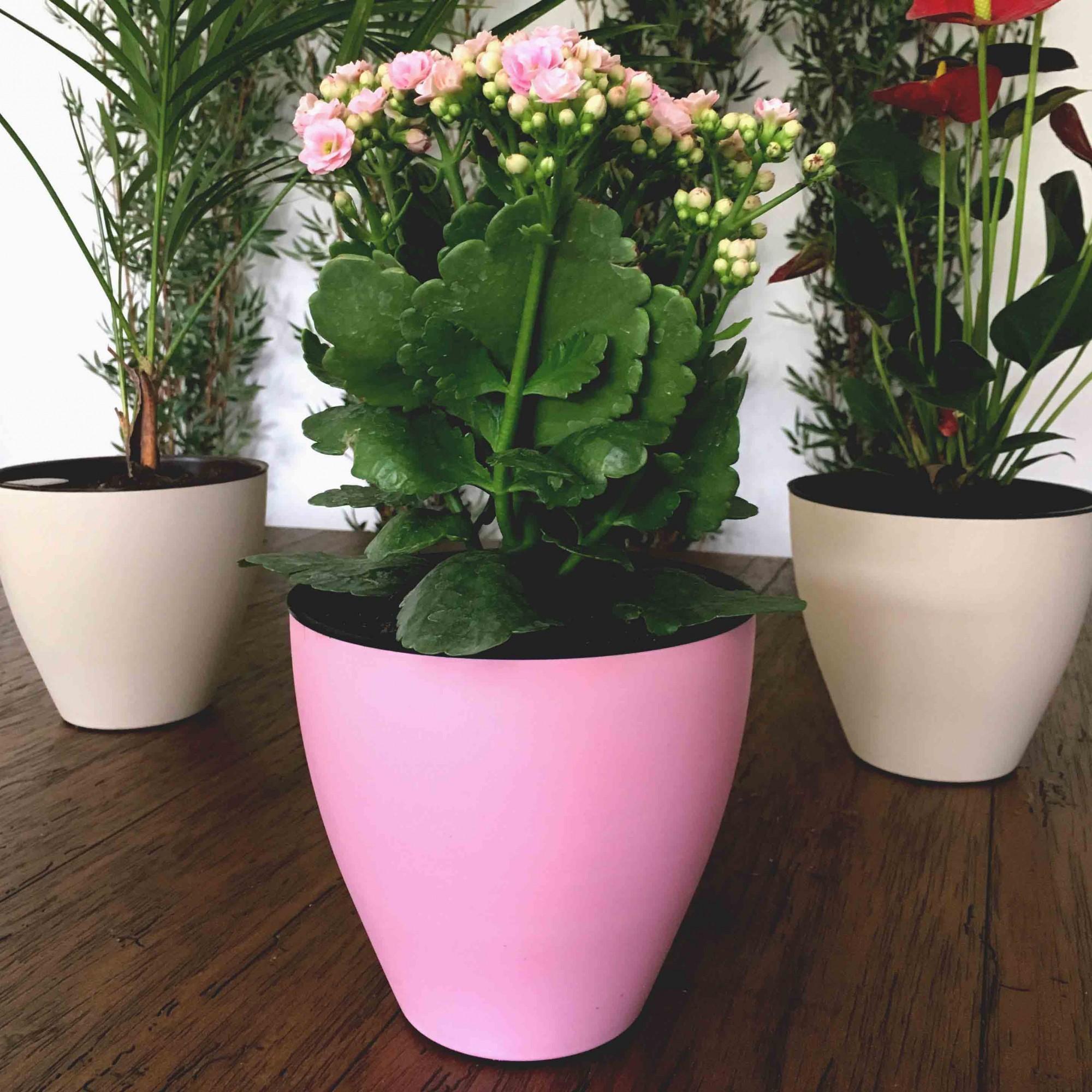 Vaso Auto Irrigável Plantiê - Rosa Quartz Fosco