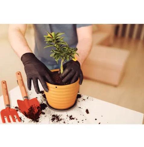 Jogo para Jardinagem com cabo em Madeira - 3 peças -  Tramontina