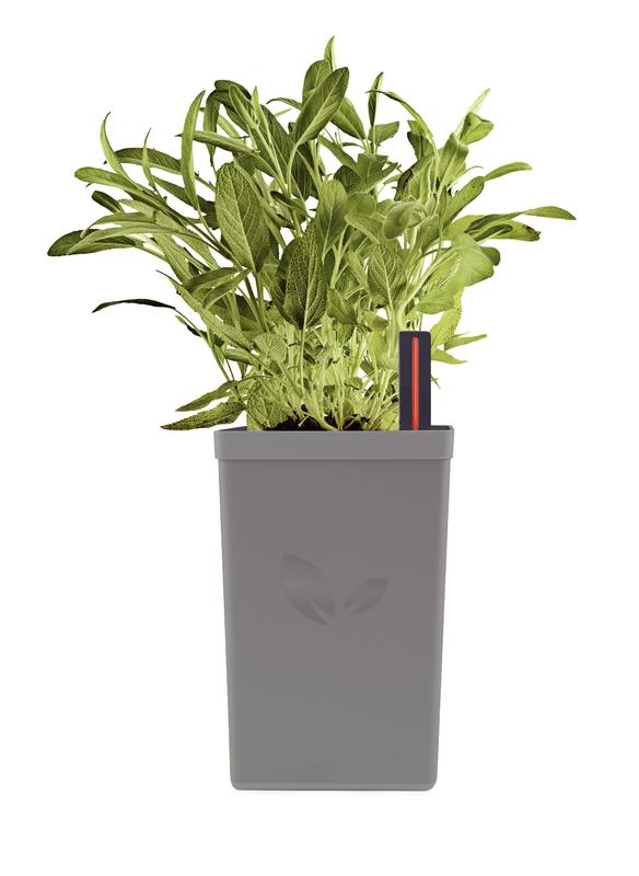 Vaso Autoirrigável em Polipropileno - 800ml - Cinza - Tramontina
