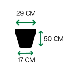 Vaso Vietnamita fosco 50 - Terracota - Vasap