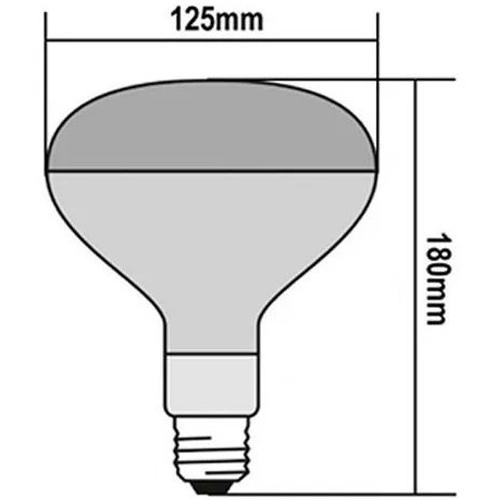 Lâmpada para Secagem 250w 127v - Brasfort