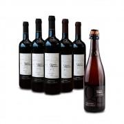 Combo 3 Vinhos Cabernet Franc + 2 Vinhos Assemblage - LEVE GRÁTIS 1 Espumante Natural Branco Brut