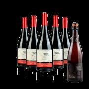 Compre 5 Vinhos Pinot Noir e leve GRÁTIS 1 Espumante Natural Branco Brut