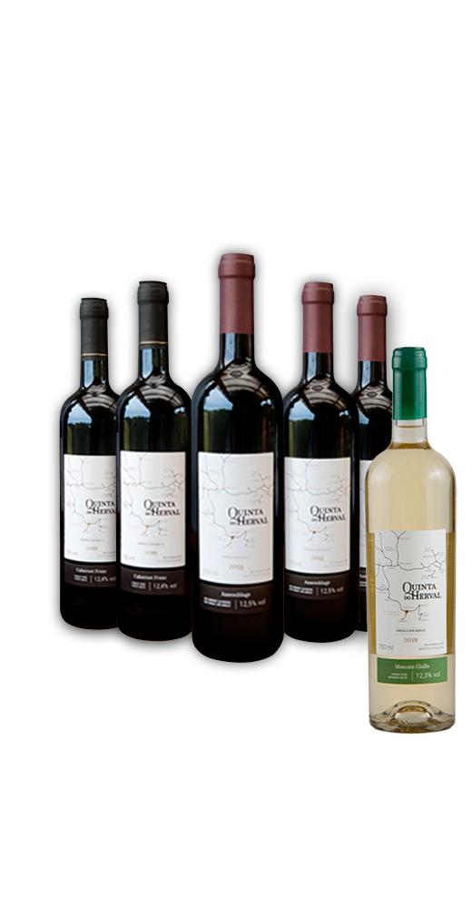 Combo 2 Vinhos Cabernet Franc + 3 Vinhos Assemblage - LEVE GRÁTIS 1 Vinho Moscato Giallo