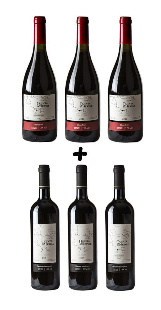 Caixa de Vinho Quinta do Herval Mix  Pinot Noir +  Cabernet Sauvignon - 6 unidades