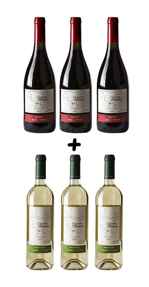Caixa de Vinho Quinta do Herval Mix Pinot Noir +  Moscato Giallo - 6 unidades