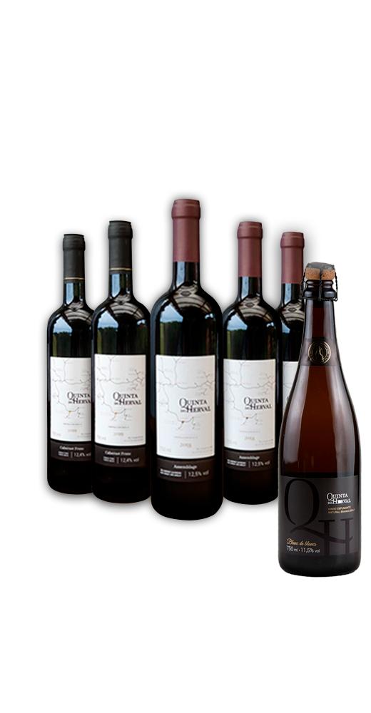 Combo 2 Vinhos Cabernet Franc + 3 Vinhos Assemblage - LEVE GRÁTIS 1 Espumante Natural Branco Brut