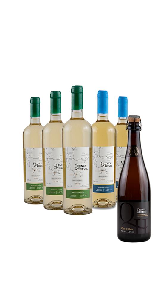 Compre 3 Vinhos Moscato Giallo + 2 Vinhos Riesling e leve GRÁTIS 1 Espumante Natural Branco Brut