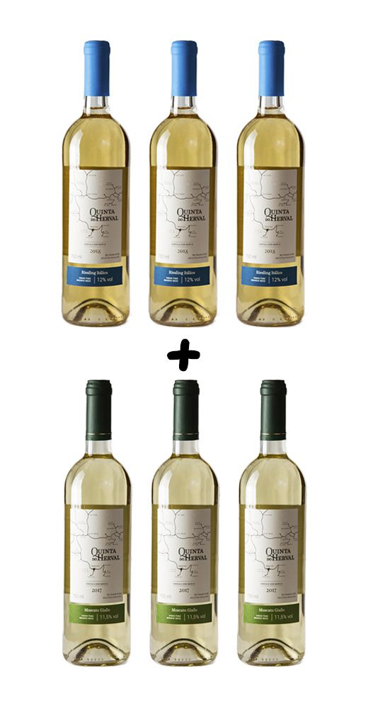 Leve 6, pague 5 - Combo vinhos brancos - Moscato Giallo + Riesling