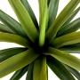 Árvore Artificial Agave 80 cm Planta Para Jardim de Inverno