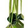 Árvore Artificial Philodendron em Silicone Toque Real 70 cm