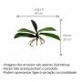 Folha de Orquídea Com Raiz Artificial 26 cm