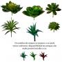 Kit 6 Suculentas Plantas Artificiais Realistas Para Enfeites