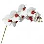 Orquídea Phalaenopsis Flor Artificial 3D Toque Realista