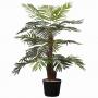 Palmeira Phoenix 100 cm de Altura em Silicone Toque Real
