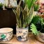Planta Artificial Folhas de Espada de São Jorge 40 cm em Silicone Aparência Realista