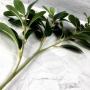 Planta Artificial Galho de Folhagem 80 cm Premium com Três Hastes