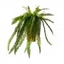 Planta Artificial Pendente de Samambaia 90 cm Premium em Silicone Toque Real