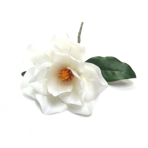 Flor Magnólia branca