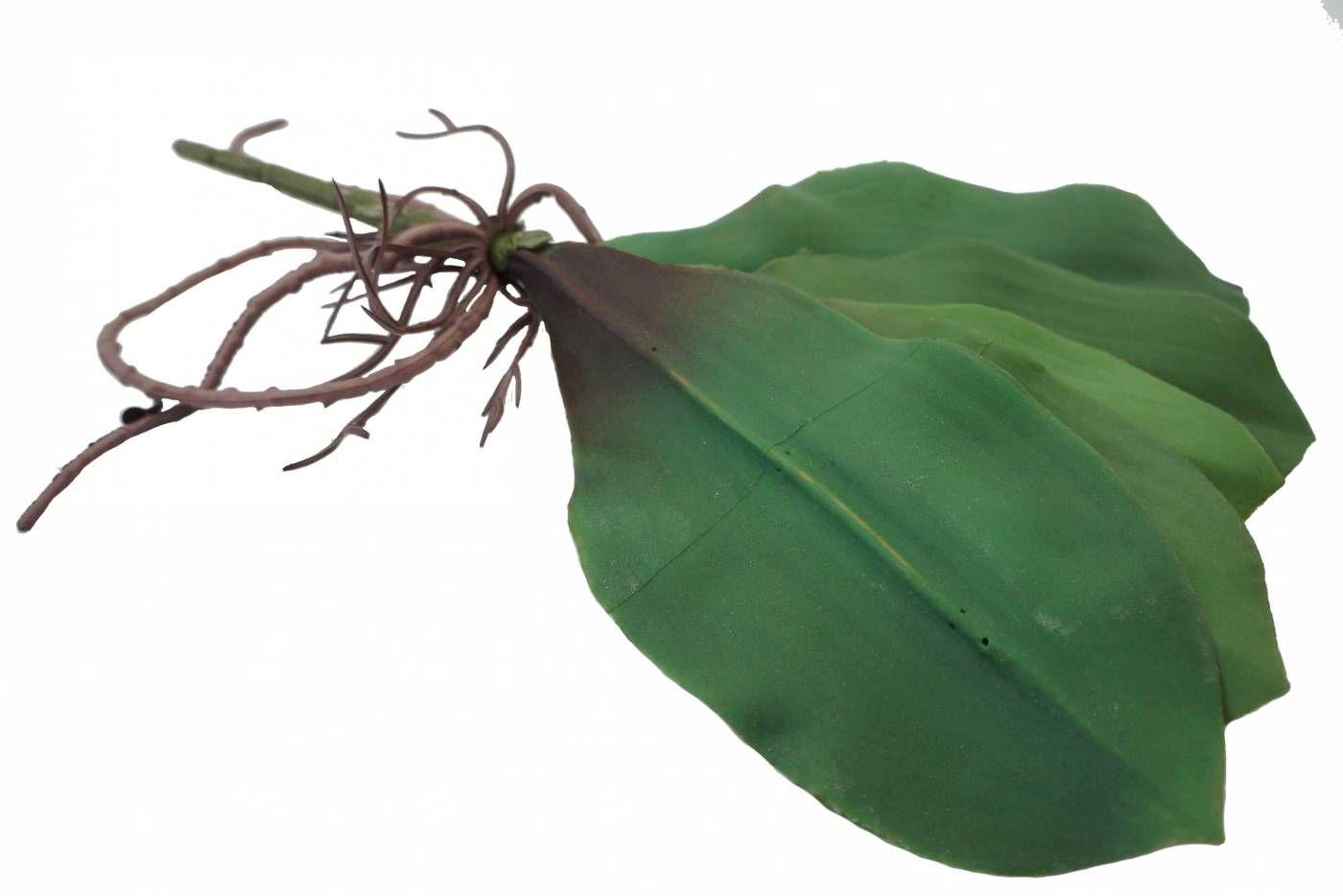 2 Folhas de orquídea artificial com raiz  média