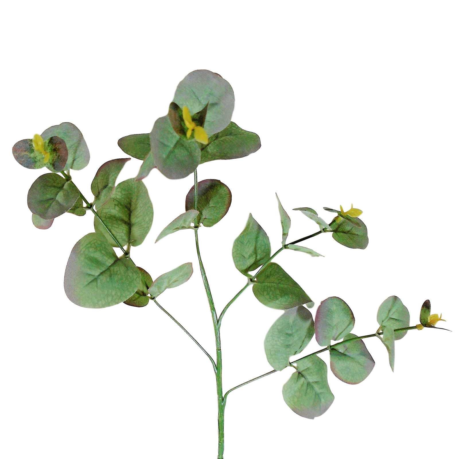 Galhos de eucalipto artificial planta para painel verde