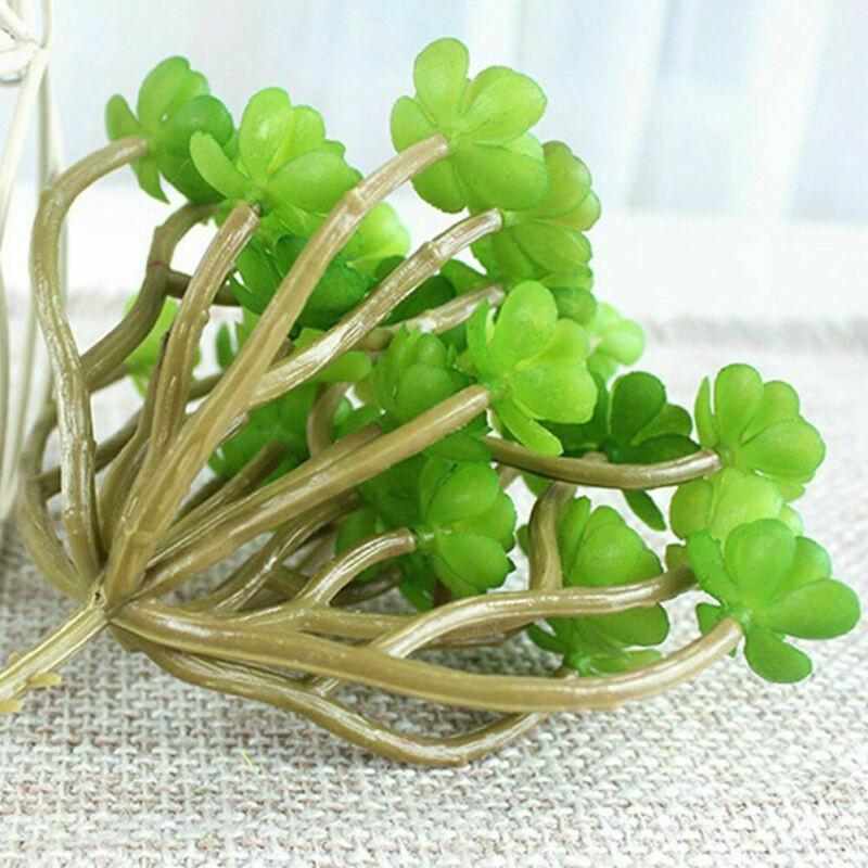 Kit de planta artificial suculenta araucaria