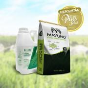 Combo 10 sacos Brachiaria Híbrida Mavuno + 20L Pastotal Completo