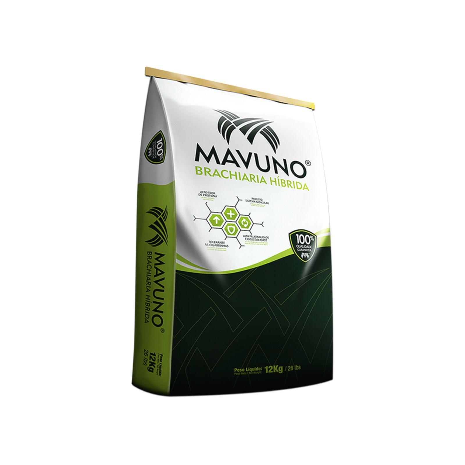 Combo 120kg Brachiaria Híbrida Mavuno + 20L Pastotal Completo
