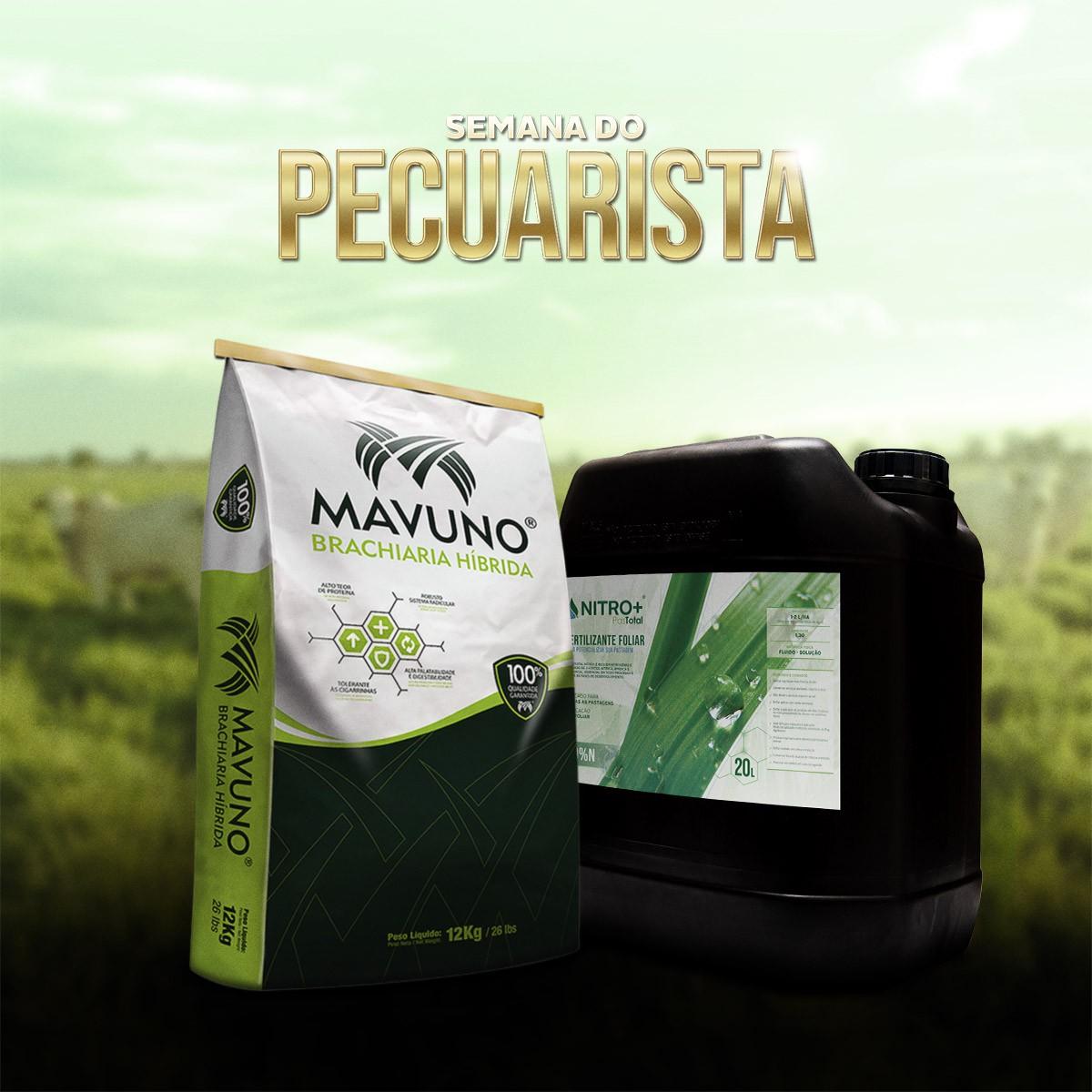 Combo 120kg Brachiaria Híbrida Mavuno + 20L Pastotal Nitro+