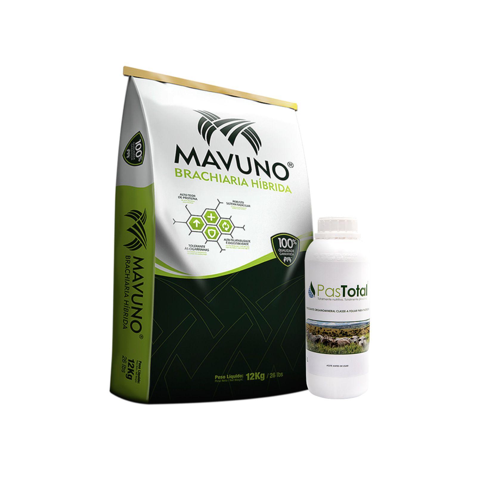 Sementes para capim Brachiaria Híbrida Mavuno 12kg + Pastotal 1 Litro