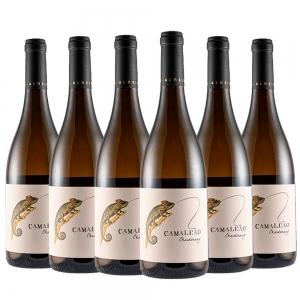 Vinho Camaleão Chardonnay 2019 | 6 Garrafas