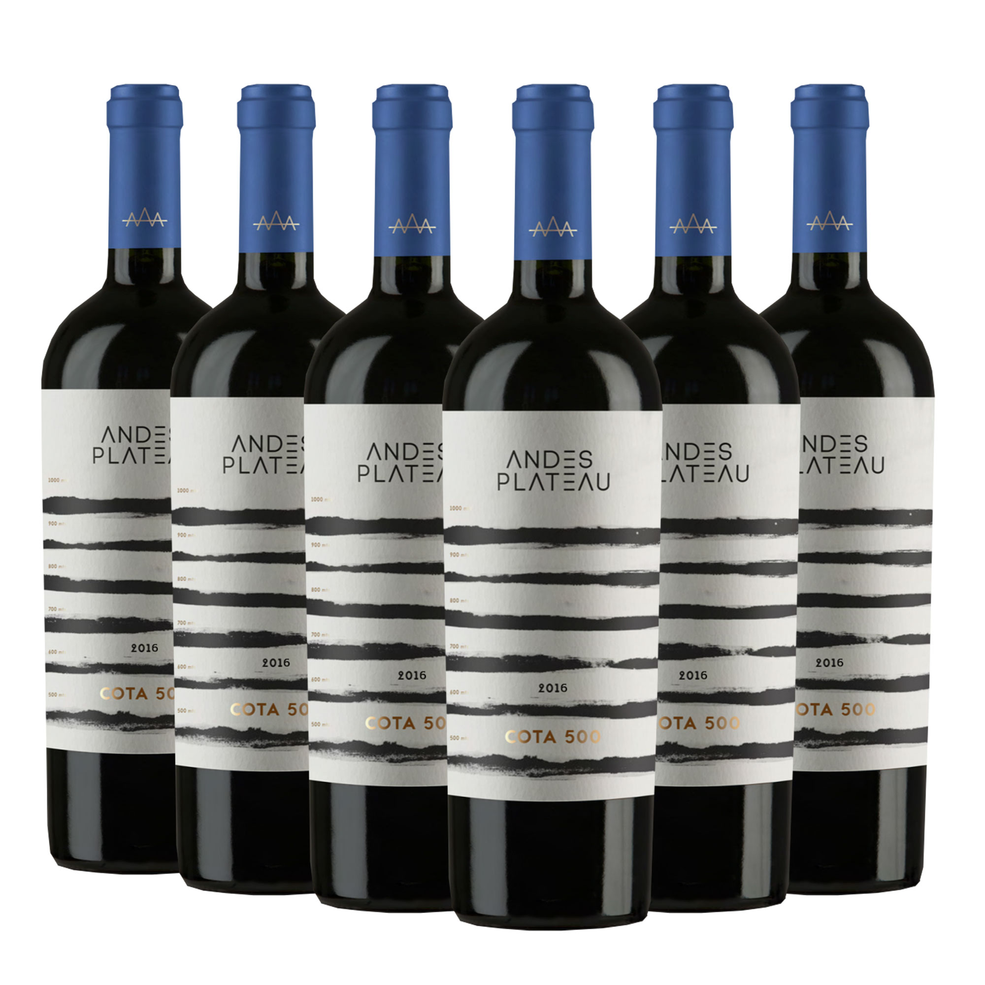 Vinho Cota 500 Andes Plateau Cabernet Sauvignon| 6 Garrafas