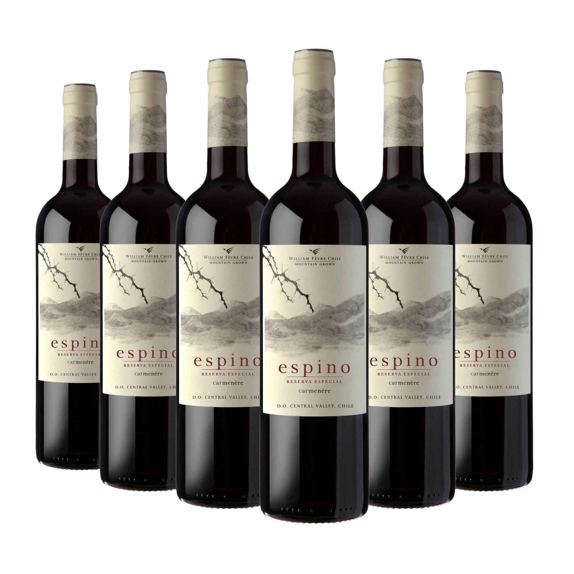 Vinho Espino Res. Especial Carmenere | 6 Garrafas