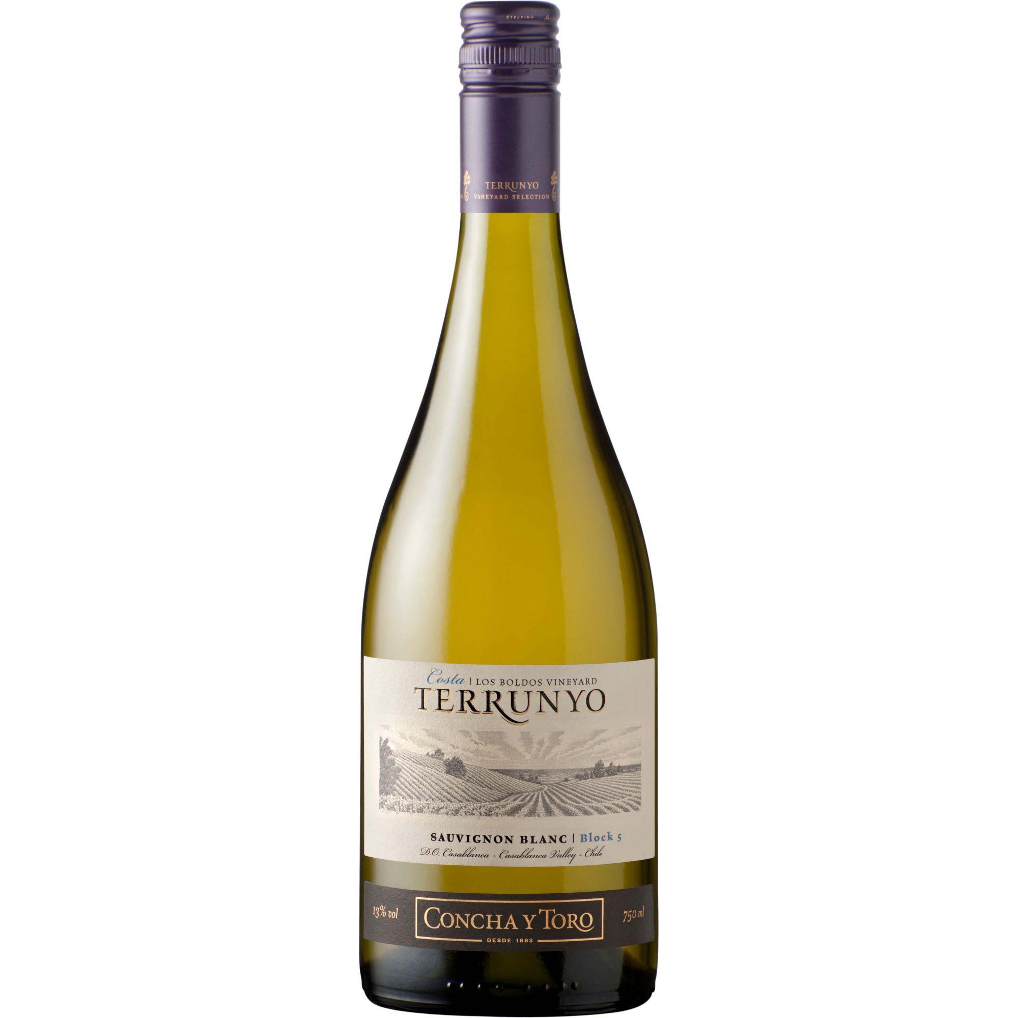 Vinho Terrunyo Sauvignon Blanc 2012