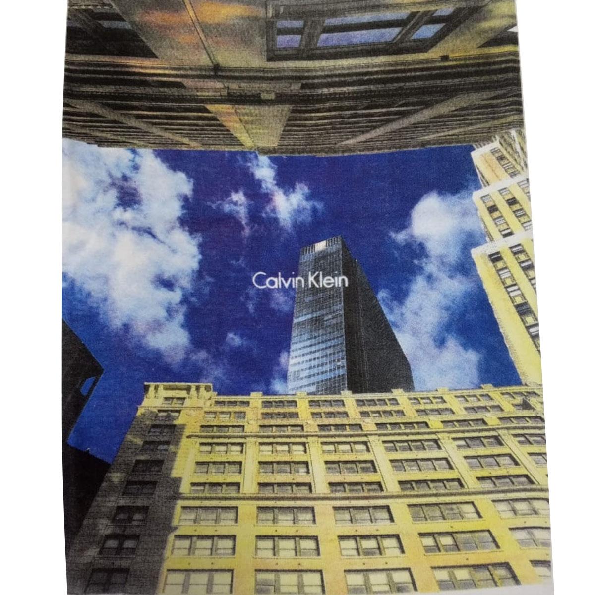Camiseta Calvin Klein Slim Buildings Branco