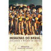 Livro Indígenas do Brasil
