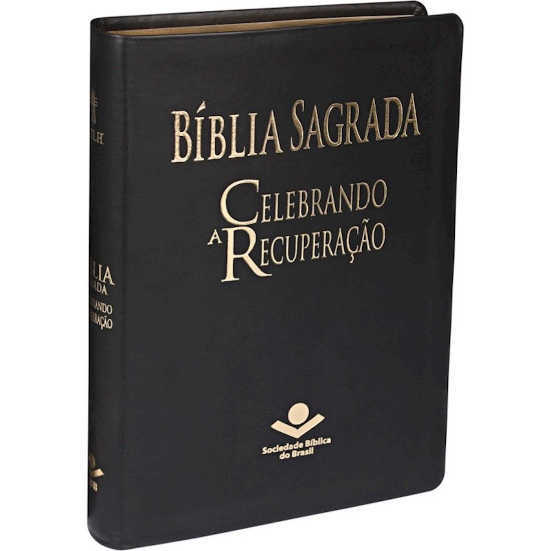 Bíblia Sagrada NTLH Celebrando a Recuperação