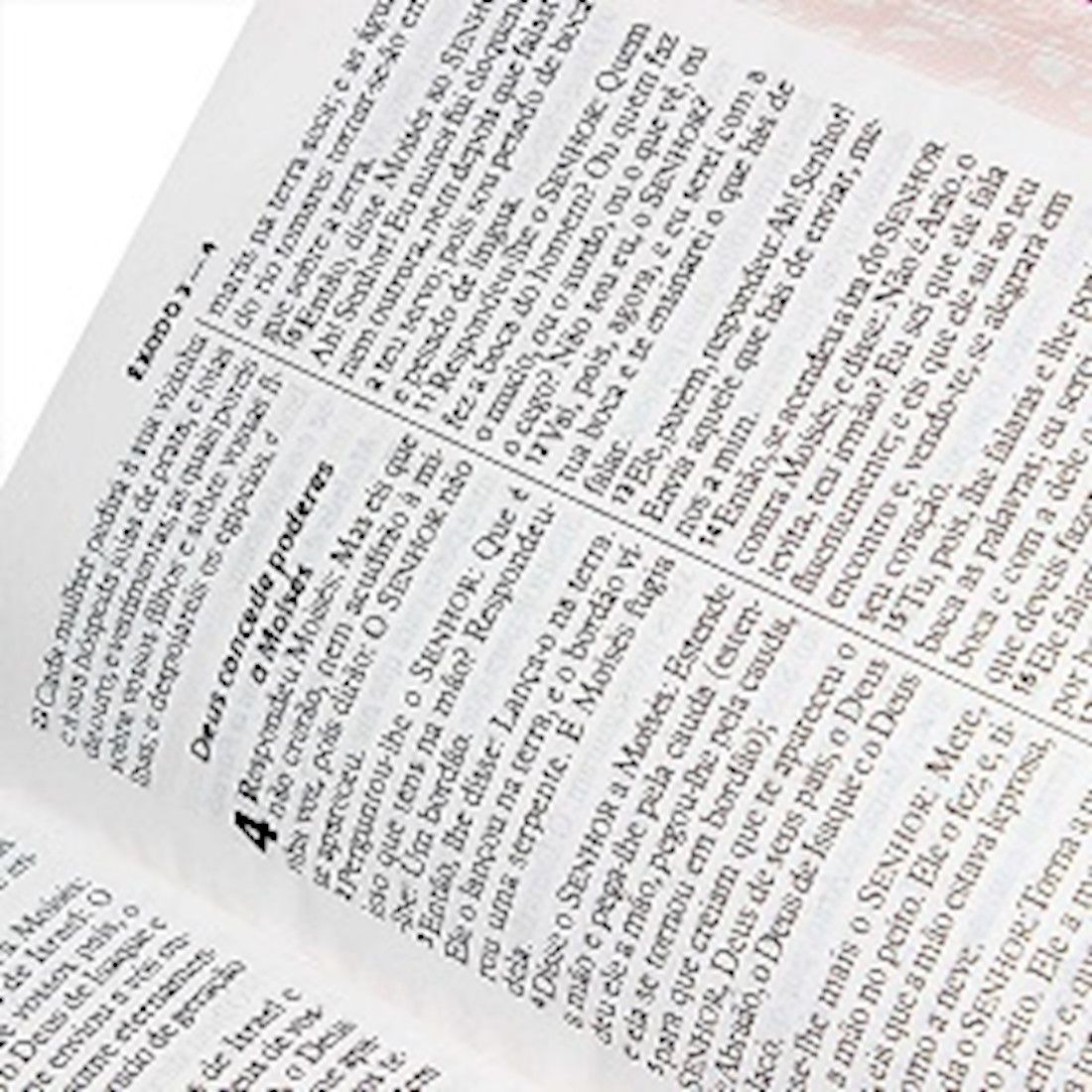 Bíblia Sagrada RA - Letra Gigante - Pink Floral