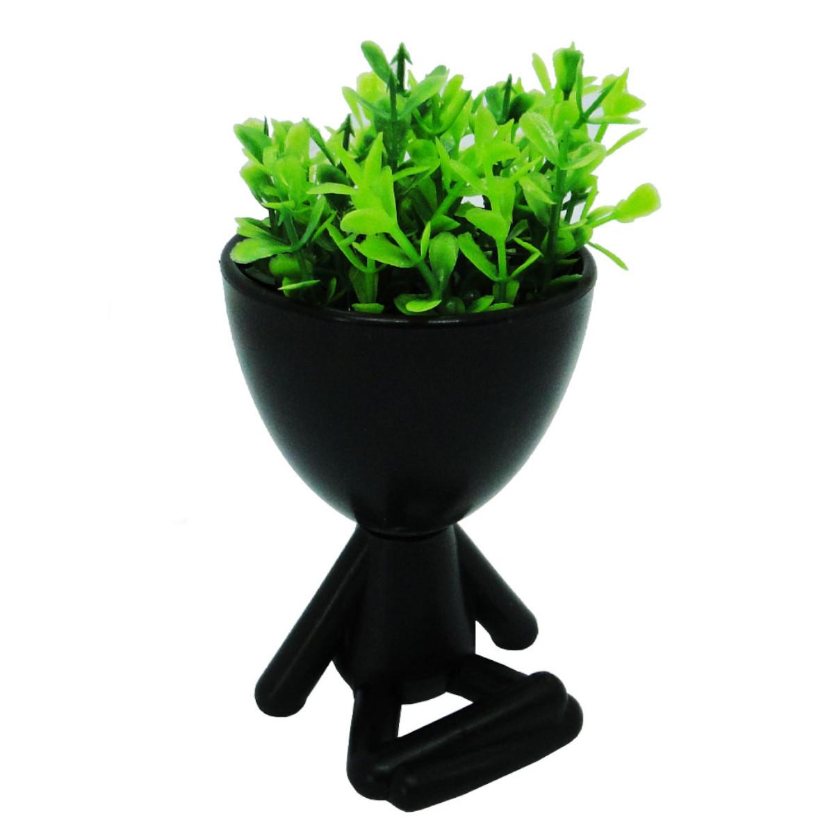 Vasos Decorativo Suculentas Planta