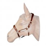 Cabresto de  Couro para Cavalo com Placa TP