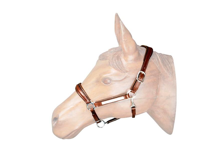 Cabresto de  Couro para Cavalo com Placa TP  - Salto & Sela