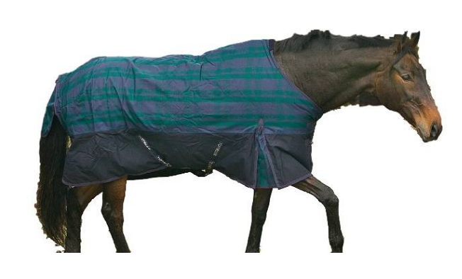 Capa de Inverno Impermeável para Cavalo HDR  - Salto & Sela