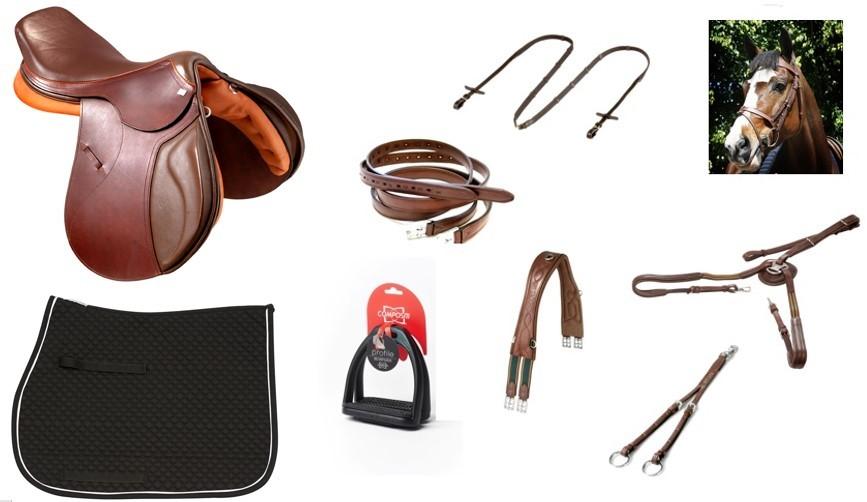 Combo/kit Sela de Hipismo Premium Tack Pro Luxo  - Salto & Sela