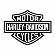 Adesivo Logo Harley Deividson 15x20cm