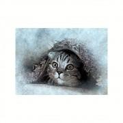 Placa Decorativa MDF Gato Escondido Abstrato