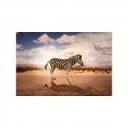Placa Decorativa MDF Zebra no Deserto Sombra