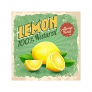 Placa Decorativa Vintage Lemon Natural Cartaz Retro 30x30cm
