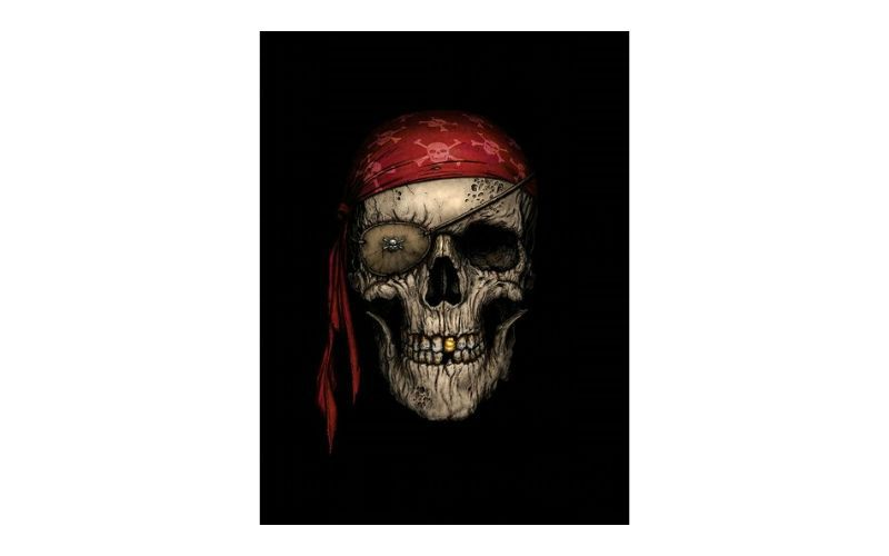 Placa Decorativa Caveira Pirata Lenço Vermelho