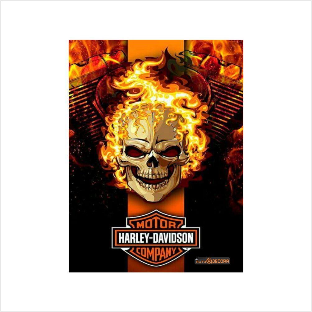 Placa Decorativa Harley Deividson Company